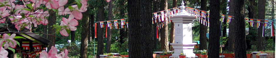 Order of Buddhist Contemplatives